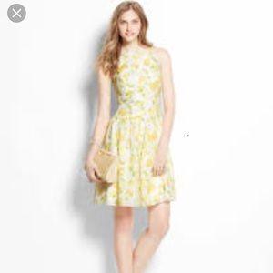 Ann Taylor Lemon Drop Dress White/Yellow 8P
